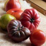 Examples of heirloom tomato varieties without cracking or splitting problems