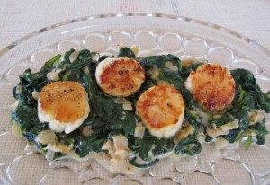 Seared Scallops on bed of Creamed Spinach