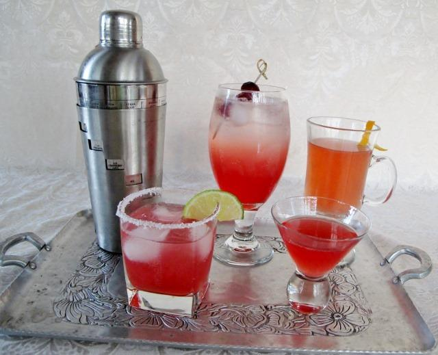 Mixology with Cranberry Shrubs