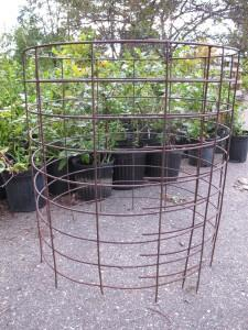 Large tomato cage made with hogwire