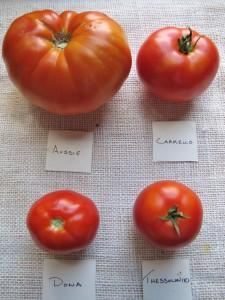 A variety of red heirloom tomatoes and a description of their flavor profile