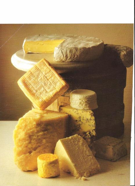 a Variety of different cheeses arrange vertically